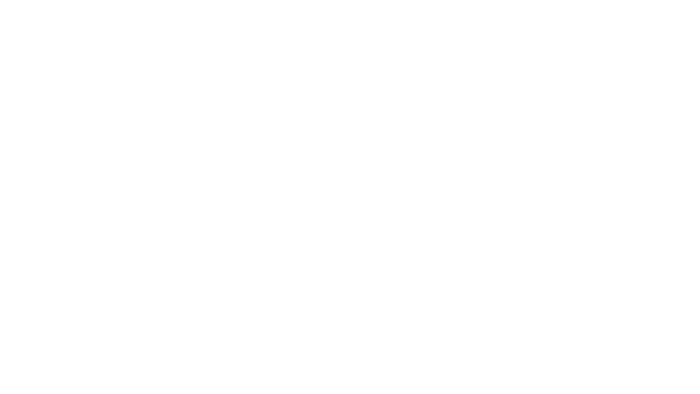 cch auxiliary logo